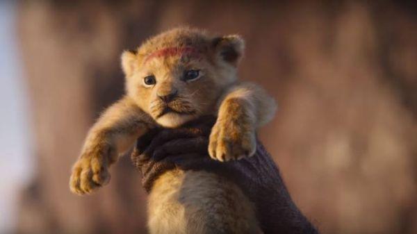 【電影】獅子王The Lion King @貝大小姐與瑞餚姐の囂脂私蜜話