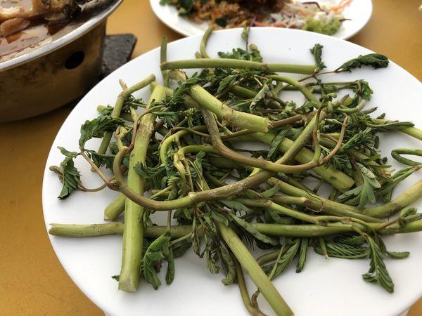 【泰國 曼谷美食】哇萊篷餐廳 เรืองฤทธิ์ ซีฟู้ด Ruengrit Seafood @貝大小姐與瑞餚姐の囂脂私蜜話