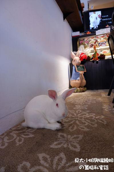 【台北  大安區六張犁早午餐推薦】兔Dreams @貝大小姐與瑞餚姐の囂脂私蜜話